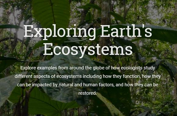 Earth's Ecosystem Explorer